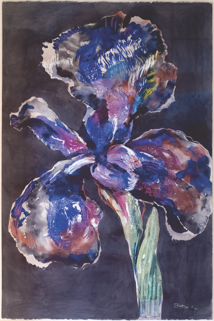 William Kentridge Iris